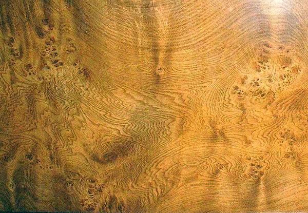 Oak Faux Wood Paint by Thomas Kershaw