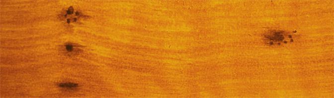 Oak Faux wood paint with cats paw knots.