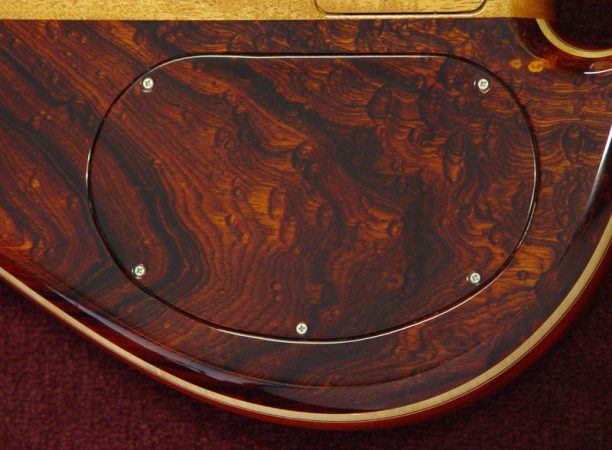 Guitar with macassar ebony