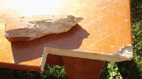 Table repair oak woodgrain