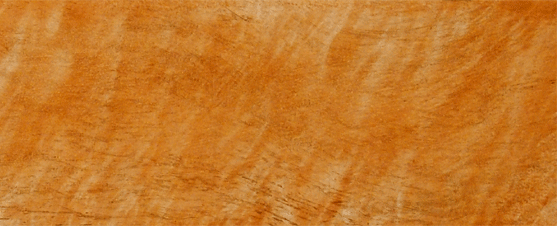 Bird's eye maple Hudson Hornet faux woodgrain Sample perfectwoodgrain